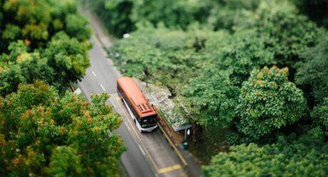 Travelling ke Bogor? Sewa Bus Bogor Di Andara Bus Saja